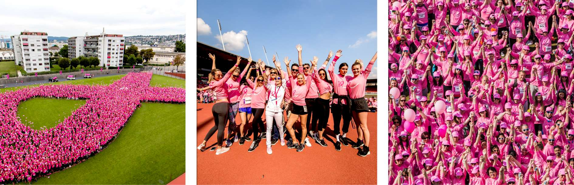 Pink Ribbon Charity Walk
